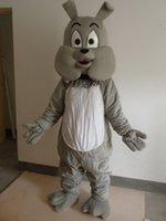 köpek kostüm çocuğu toptan satış-Profesyonel Yeni Stil Gri Köpek Maskot Kostüm Yetişkin BOYUTU EPE