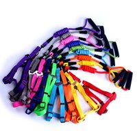 Wholesale Cheap Leashes For Dogs - Classic Cheap Dog Pet Harness With Form Handle Fashion Dog Lead Rope Training Leash For Small Large Pets 9 Color 3 Size 10PCS LOT