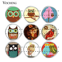 Wholesale Glass Owls - NOOSA Ginger Snap Button 18mm Glass Snap Charms Colorful Animal Owl Series Mixed 20pcs lot Wholesale VOCHENG Vn-1808