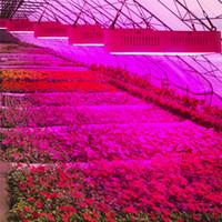 Wholesale led garden plant light - Full Spectrum 1200W 1200pcs SMD 986Red:136Blue:8UV:8IR:32White:32Warm Greenhouse LED Grow Light Hydroponics Garden Plant Lamp
