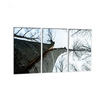 Wholesale print frame digital photos - 3 PCS Modern Wall Art HD Tree Photo Canvas Prints Giclee Print Decoration Paintings for Home