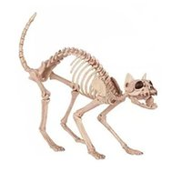 Wholesale EMS Skeleton Cat Plastic Animal Skeleton Bones for Scary Halloween Decoration