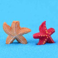 ingrosso piccolo giardino paesaggistico-Mediterraneo Pentagonal Starfish Piccolo Sea Star Materiale fai da te Moss Terrarium Micro Beach Paesaggio Ornamenti per acquario Giardino Fata Desktop