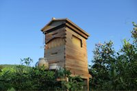 Wholesale NEWLY DESIGN and popular honey flow beehive automatic out flow wooden bee hive