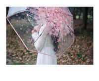 Wholesale Wholesale Nylon Fabric Flowers - Cherry Blossom 8K*53cm 3 Fold Sun Rain Umbrellas Rain Tools Woman Sakura Flowers Transparent Umbrella For Female DHL Fedex Free