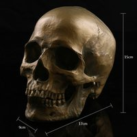 Wholesale Antique high accurattion resin human separated skull Halloween Props skull teaching mold personalized Home craft Decoration for beer bar