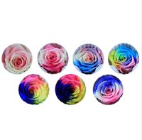 Wholesale Holiday Flower Heads - 8pcs 4-5cm Colourful Preserved Flower Rose Bud Head For Wedding Party Holiday Birthday Velentine's Day Gift Favor