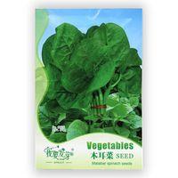 Wholesale Gardening Spinach - Original Packaging 35 pcs   bag Malabar Spinach Seed Best Garden Plants Vegetable Seeds