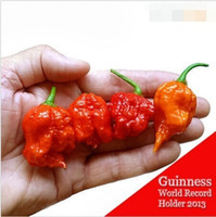 "semillas orgánicas envío gratis al por mayor-100 SEMILLAS - 100% Genuine Fresh Rare Red ""Carolina Reaper"" Pepper Seeds (hot chilli) Semillas de vegetales orgánicos * Envío gratis"