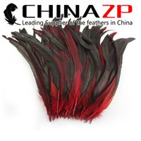 Wholesale led party accessories for sale - Leading Supplier CHINAZP cm inch Premium Quality Dyed Mix Color Rooster Tail Feathers for Decoration