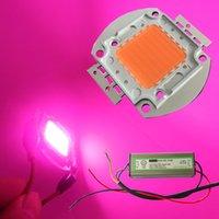 Wholesale Diy Led High Power - High Power cob led grow chips Full Spectrum 380NM-840NM 10W 30W 50W 100W DIY plant grow lights Kit Epistar Bridgelux 35mil 45mil