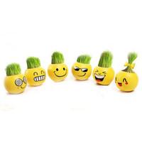 ingrosso erbe bonsai-Mini vasi QQ Expression Mini Piante Magic Grass Planting Office Bonsai Plant Pots regalo Desktop decorazione del giardino
