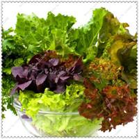 semillas de hortalizas gmo al por mayor-200pcs / bag NON-GMO semillas de lechuga mixtas semillas de vegetales saludables, planta de bonsai jardín de su casa