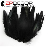 Wholesale Dyed Feathers Wholesale - Leading Supplier Wholesale in ZPDECOR Feathers Good Quality Beautiful Dyed Black Rooster Coque Feathers for bulk Sale
