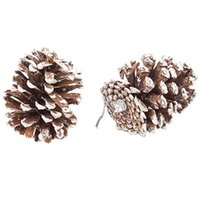 fournisseurs d'ornements de noel achat en gros de-9 véritables petites pommes de pin naturelles pour les décorations artisanales de Noël, peinture blanche E00341 BARD