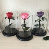 Wholesale The Little Prince Glass Cover Fresh Preserved Rose Flower Immortal Colorful Roses for Girl Valentine s Day Wedding Gifts