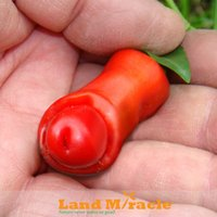 Wholesale Small Penis - Rare Small Red Peter Pepper seeds Vegetables and fruit seeds Penis Chill Red Hot, funny peppers Bonsai plants Seeds-20pcs