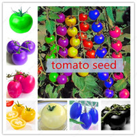 Wholesale Wholesale Seeds Fruits Vegetables - 100pcs bag rainbow tomato seeds, rare tomato seeds, bonsai organic vegetable & fruit seeds,potted plant for home &garden