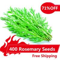 sementes de plantas de jasmim venda por atacado-400 Sementes de Alecrim DIY Jardim Planta Fácil de Crescer Erva, sementes de hortaliças saudáveis,