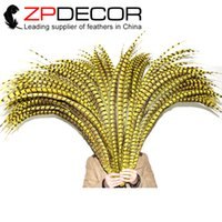 Wholesale Crazy Carnival - ZPDECOR 100-110cm(40-44 inches) Super Long Dyed Yellow Special Lady Amherst Pheasant Tail Feather for pheasant costume Carnival Crazy SHOW