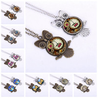 Wholesale Owl Pendant Silver Bronze - Vintage Owl Pendant Necklace Antique Bronze Glass Dome Choker Antique Silver Animal Sweater Chain 18 Inches Free Chain