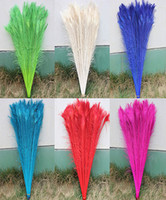 Wholesale White Peacock Feathers Wedding - wholesale Decolorization 100 PCS dyeing peacock feathers 70-80 cm   28 - 32 inches color you choose Wedding centerpiece decor