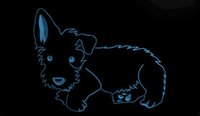LS1764-b-Scottie-Dog-NOUVEAU-Affichage-Pet-Shop-Neon-Light-Sign.jpg