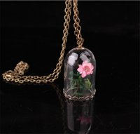 Wholesale Plants Cover - hot ! 2017 New Fashion Handmade Dry Flower Plant Glass Cover Pendant Necklace Conch Dandelion Retro Necklace For Women's Jewelry Accessories