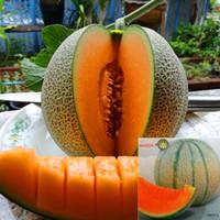 ingrosso melone di semi-Il trasporto libero 100 pz di semi di melone maiour giappone in confezione originale molto dolce frutta semi di melone giappone tipo semi di melone hami