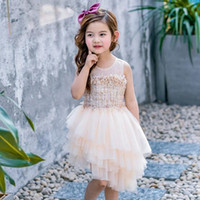 Wholesale Tutu Wholesale Materials - New Collecting Kids Girl Sleeveless Summer Dresses Tutu Skirt Cake Dress Gauze Lace Material Size 100-140cm Children Lovely Dress 5Pcs Lot