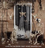 lustige partys großhandel-Neues design fantasie leben spaß knochenskelett - bat bone home halloween party dekoration