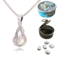 Wholesale Lock Pendant Necklace - 925 Silver Screw Teardrop Pearl Cage Pendant Helix Cage Pendant Mounting For DIY Locket Necklace Lock In Oyster Pearl