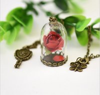 Wholesale Vintage Mirror Necklace - 2017 Beauty and The Beast Necklace Vintage Dry Floral Glass Jewelry Dome mirror Charm bronze tone Long Necklace