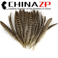 Wholesale Pheasant Wings - Leading Supplier CHINAZP 15~20cm 50Pcs lot Excellent Quality Beautiful Natural Reeves Venery Pheasant Round Pointer Wing Feathers