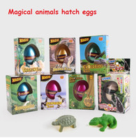 Wholesale Dinosaur Toy Eggs - New Children's Funny Toy Box Large Dinosaur Eggs Children Education Toys Water Expansion 7 styles animal Hatching Egg animal kids toy