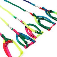 Wholesale Security Harness - New Lovely Colorful Rainbow Color Cat Dog Walking Harness Leash Outdoor Security Pet Product Free Shipping ZA3964