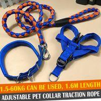qualität hundetraining halsbänder großhandel-Hundehalsbänder und -leinen, beste Qualität und Design Hundehalsbänder und -leinen aus Nylon