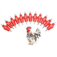 tazas de pollo abrevadero al por mayor-500 Pcs Vasos de agua Nipple Chicken Drinkers Waterer 360 Angle Poultry Supplies E2shopping