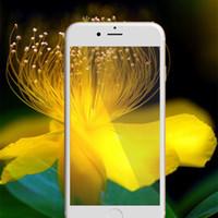 verres trempés iphone complet achat en gros de-Protecteur d'écran 3D pleine couverture Trempé verres Film Anti-lumière bleue Nano anti-déflagrant pour apple iphone6 6plus