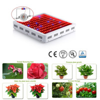 Wholesale Wholesale Indoor Led Grow Lights - Full Spectrum 1000w 1200W 1600W 2000W LED Grow Light Double Chip Led Plant Lamp Indoor greenhouse growing garden flowering hydroponic lights