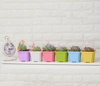 ingrosso decorazione del vaso del fiore del giardino-Commercio all'ingrosso di alta qualità di spessore colorato quadrato mini vaso di fiori piantagione interna per la casa succulente giardino decorazione casa camera tavoli arredamento