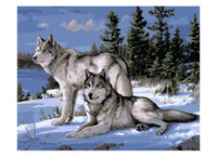 Oil Painting painting acrylic sheet - No Frame Wolf Animals DIY Painting By Numbers Kits Paint On Canvas Acrylic Coloring Painitng By Numbers For Home Wall Decor