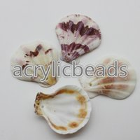 Wholesale Beach Shells Crafts - 50g all kinds of Natural Sea Shell Bead Conch Beach seashells Jewelry Necklace Pendants Art Craft Wedding Home Decor