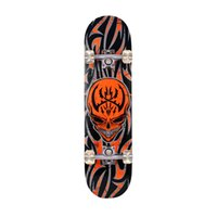 Wholesale Winmax Outdoor Skatebaord Professional Heat Transfer Pattern Chinese Maple Longboard Skateboard for Adult or Children