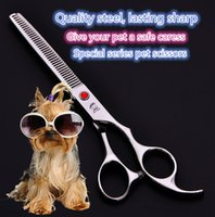 Wholesale Dog Grooming Thinning Scissors - 5 color, 7 inches high quality pet hairdressing scissors, cat dog fur scissors, straight bending, thinning + 1 comb