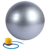 Wholesale 65cm Anti Burst and Slip Resistant Fitness Ball with Pump