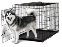 Wholesale Cat Cages - 48'' 2 Doors Wire Folding Pet Crate Dog Cat Cage Suitcase Kennel Playpen With Tray