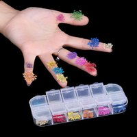 Wholesale gel sticker decoration - 12 Colors Real Dry Dried Flowers Nail Art Decoration For UV Gel Nails Sticker For Nail Design DIY Manicure Styling Nail Art Tools