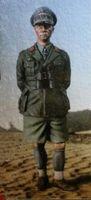 Wholesale Wwii Wholesale - Wholesale- 1 35 WW2 German Erwin Rommel WWII Resin Model Kit figure Free Shipping