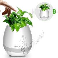 Wholesale Big Plastic Plant Pots - New! Creative Bluetooth Smart Music Flower pots K3 Intelligent Real Plant Touch Play Flowerpot Colorful Light LED Night light